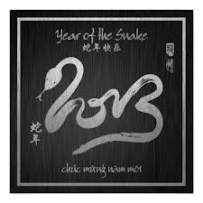 Luna New Year 2013