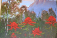 Waratahs in the Blue Mountains
